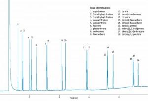 Aplicaţii gaz cromatografie Dani